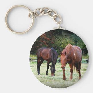 Brown Horses Grazing Keychain