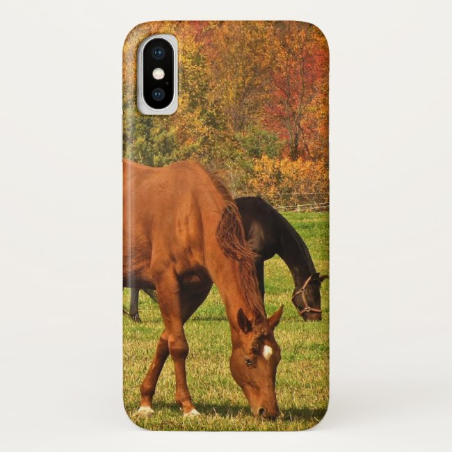 Brown Horses in Autumn iPhone X Case