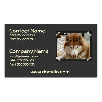 Brown Husky Business Card