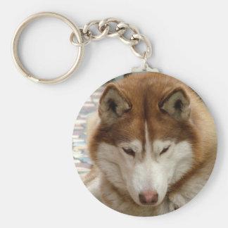 Brown Husky Keychain