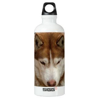 Brown Husky SIGG Traveler 0.6L Water Bottle