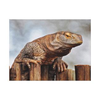 Brown Iguana on Fence Canvas Print