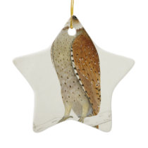 Brown Illustrated Owl on Branch Ceramic Ornament