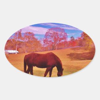 > Brown in a dreamy colored field Oval Sticker