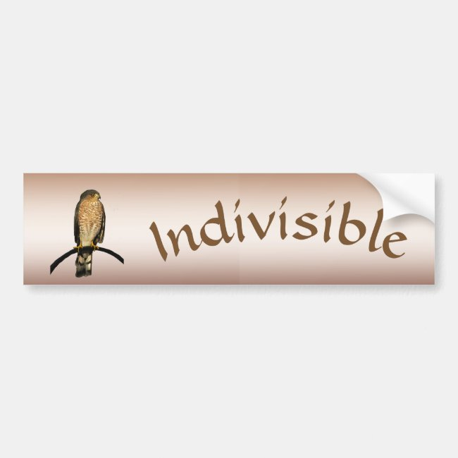 Brown Indivisible Hawk Bumper Sticker