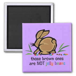 Brown Jelly Beans Refrigerator Magnet