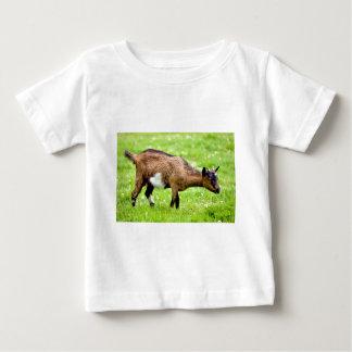 Brown juvenile goat on grass baby T-Shirt