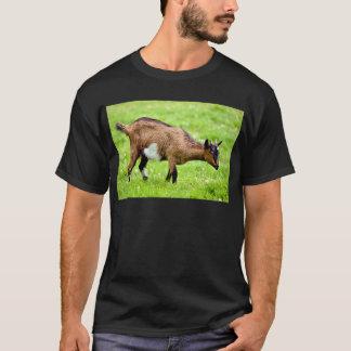 Brown juvenile goat on grass T-Shirt