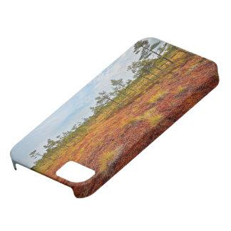 Brown Kemeri Bog In Latvia iPhone SE/5/5s Case