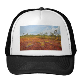 Brown Kemeri Bog In Latvia Trucker Hat