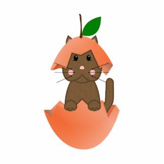 Brown Kitty In A Peach Photo Cutouts