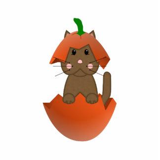 Brown Kitty In A Pumpkin Photo Sculpture Ornament