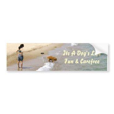 Beach Themed Brown Labrador Having Fun in the Water Bumper Sticker