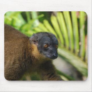 Brown Lemur Mouse Pad