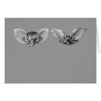 Brown & Lesser Long-eared Bats Card