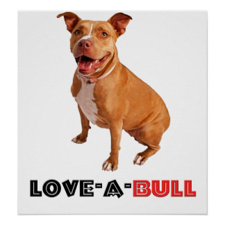Brown lindo Pittie Amor-uno-Bull Posters