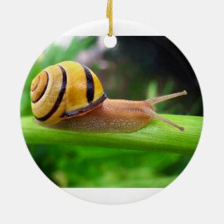 Brown Lipped Snail Cepaea Nemoralis Grove Snail Double-Sided Ceramic Round Christmas Ornament