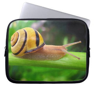 Brown Lipped Snail Cepaea Nemoralis Grove Snail Laptop Computer Sleeves