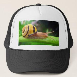 Brown Lipped Snail Cepaea Nemoralis Grove Snail Trucker Hat