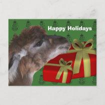 Brown Llama Farm Animal Christmas Holiday