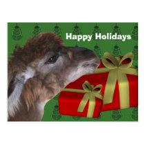 Brown Llama Farm Animal Christmas Holiday Postcard