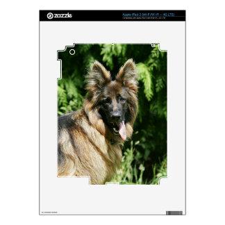 Brown Long Haired German Shepherd 1 iPad 3 Decals