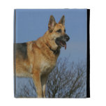 Brown Long Haired German Shepherd 2 iPad Folio Covers