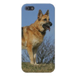 Brown Long Haired German Shepherd 2 Case For iPhone 5