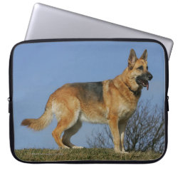 Brown Long Haired German Shepherd 2 Laptop Sleeve