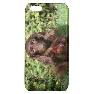Brown Long-haired Miniature Dachshund iPhone 5C Cover
