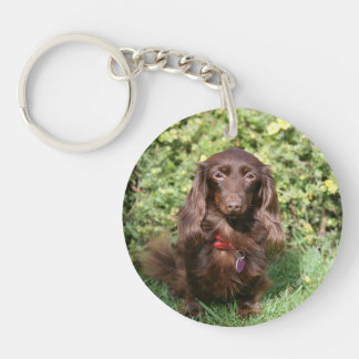 Brown Long-haired Miniature Dachshund Double-Sided Round Acrylic Keychain