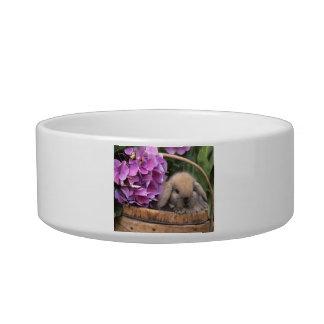 Brown Lop-Eared Bunny Rabbit Pet Bowl