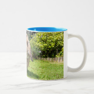 Brown lopped ear rabbit with lavender coffee mug