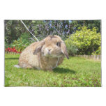 Brown lopped ear rabbit with lavender place mats