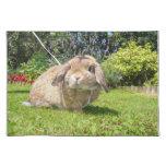 Brown lopped el conejo del oído con lavanda mantel individual