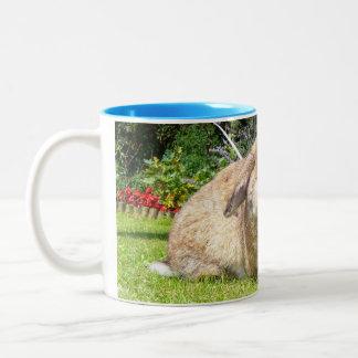Brown lopped el conejo del oído con lavanda taza
