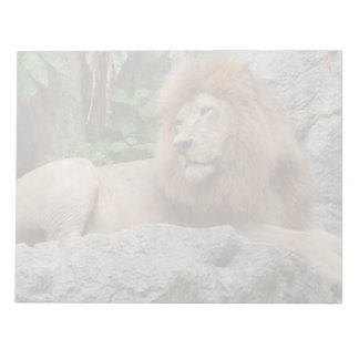 brown Male Lion with large mane Lays on Rock ledge Notepad