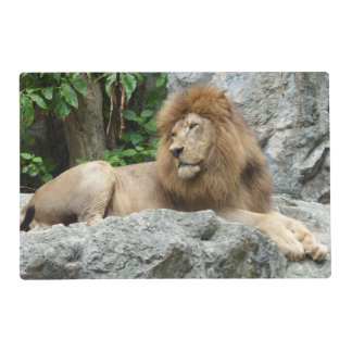 brown Male Lion with large mane Lays on Rock ledge Laminated Placemat