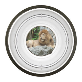 brown Male Lion with large mane Lays on Rock ledge Pet Bowl