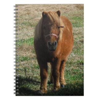 Brown miniature horse spiral notebook