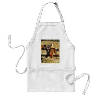 Brown miniature horses running adult apron
