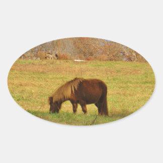 Brown miniature Pony Oval Sticker