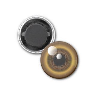 Brown Monster Eye Magnet