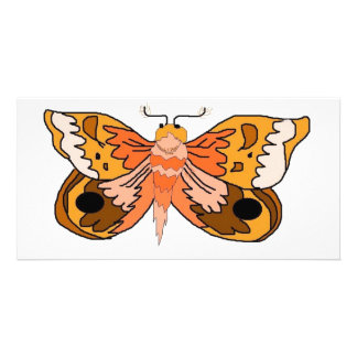 Brown Moth Card