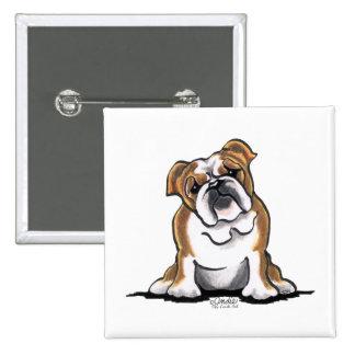 Brown n White English Bulldog Sit Pretty Pinback Button