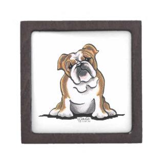 Brown n White English Bulldog Sit Pretty Premium Trinket Box