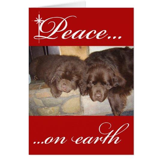 Brown Newfoundland Christmas Card