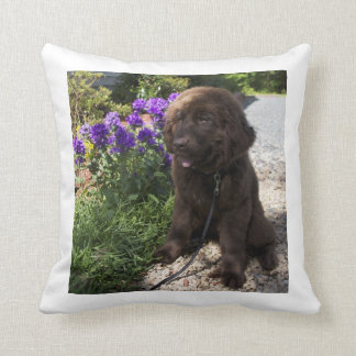 Brown Newfoundland Dog Pup Throw Pillow