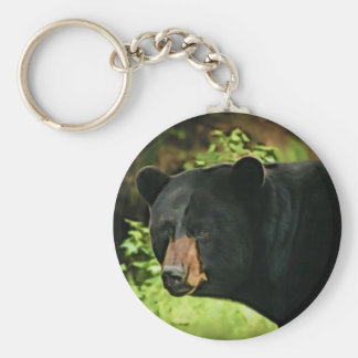 Brown Nosed Bear Basic Round Button Keychain