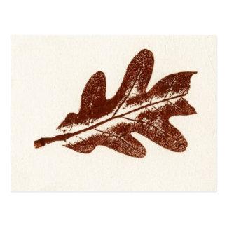 """Brown Oak Leaf #2"" Country Roads Postcard"